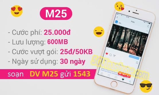 Hướng dẫn cách đăng ký gói cước M25 Vinaphone